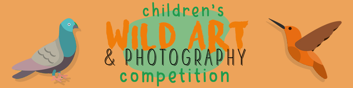 Header image for the Wild Art and Photography Competition it has an orange background and a cartoon image of a pigeon and a humming bird